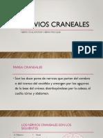 Nervios Craneales Secreciones