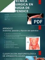 Técnica Quirúrgica en Cirugia de Apéndice