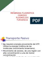 OSMOSIS.pptx
