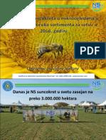 8 NS Hibridi Suncokreta u Mikroogledima 2015 i Preporuka Sortimenta 2016