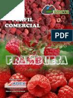 Perfil Comercial Frambuesa