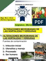 8 Microbiologia Frutas y Hortalizas