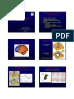 Trastornos Neuro y Corteza Frontal