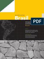IBASE. Pesquisa Sobre Juventudes No Brasil.