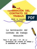 Terminación 1. Prof. Palavecino