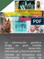 Núcleo e información genética 2_.ppt