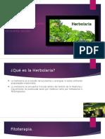 herbolaria3