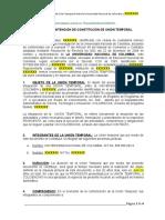 Acuerdo de Intención de Constitución de Unión Temporal (4)