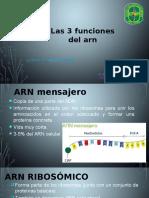 Las 3 Funciones Del Arn