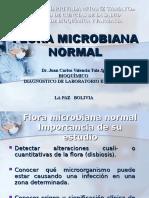 Presentacion Flora Microbiana Normal