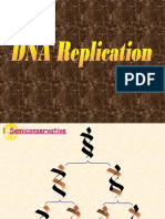 DNA Replication.pdf