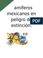Mamíferos Mexicanos