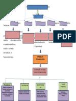 Modelos Pedagogicos y Curriculares