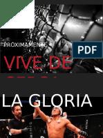 Brochure promocional luchaperu.com