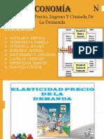 ELASTICIDAD PDF pame.pdf