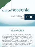 EQUINOTECNIA Produccion