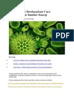 Jenis Bakteri Berdasarkan Cara Mendapatkan Sumber Energi