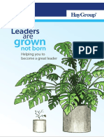 Hay Group Guide - Helping You Become a Great Leader (1)