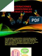 Alteraciones Cromosómicas Estructurales (1)