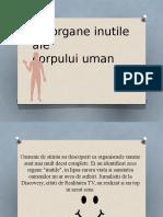 10 Organe Inutile Ale Corpului Uman