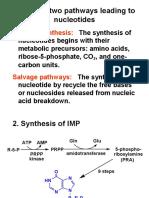 2nd Metabolism of Nucleotides