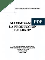 MAXIMIZANDO LA PRODUCCIÓN DE ARROZ