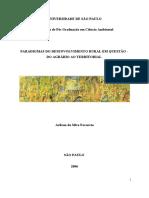 Paradigmas do desenvolvimento rural em questão _FAVARETO.pdf