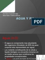 Agua y pH.pptx