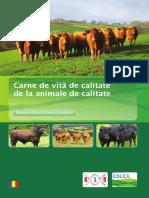 British Breeding Cattle Rdom