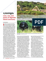 Island of the Chimps August 2015