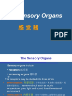 2014 16.Visual Organ