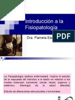 Introduccion a La Fsp