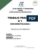 ejemplo pericia documentologica