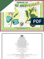 ervas medicinais da amazônia