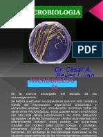 SEM 1 Micro Bacteria ...