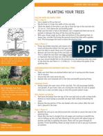 Fact Sheet 3 - Planting Your Trees ~ School Ground Greening - Maintenance