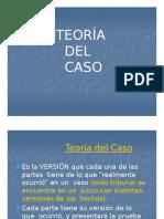 Teoría Del Caso.