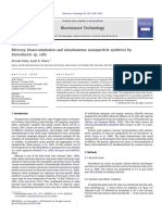 Bioacumulacion de Mercurio y Sintesis Por Enterobacterias PDF
