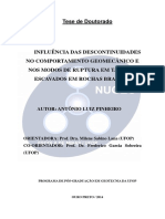 TESE_InfluênciaDescontinuidadesComportamento