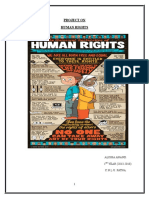 Human Rights Project for BHRC