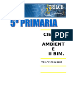 CTA. II BIM