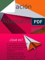 Radiación adaptativa