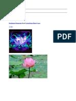 ramkissoon ramnarine shared lotus divine flower11