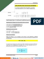 Producto de Una Matriz Por Un Escalar-10.04.14