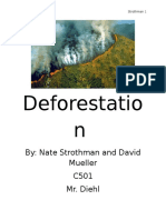 final deforestation paper earth 1