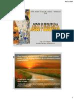 CPAL-APEGO Y RESILIENCIA.pdf
