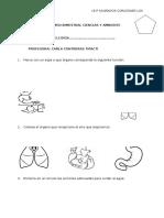 EXAMENES-BIMESTRALES