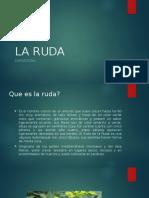 LA RUDA