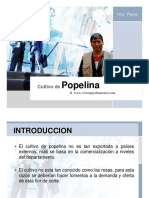 Culitivo de popelina.pdf