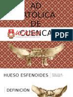 Esfenoides..pptx